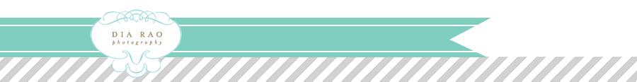 diarao.com logo